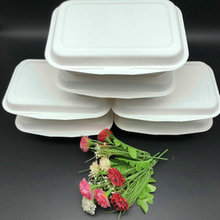 600ml Hotsale Biodegradable Paper Pulp Box Bagasse Food Container