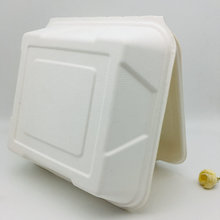 ​​Good Quality 9 inch sugarcane  biodegradable lunch box