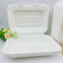 9*6 inches biodegradable food Sugarcane box