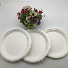 Recycle Sugarcane Food Container Disposable Bagasse Australian Plates