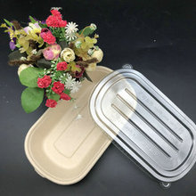 New Product Disposable Tableware Biodegradable Bagasse Container for Food