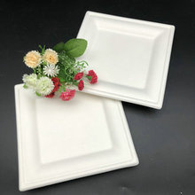 Wholesale 100% Biodegradable Disposable Bagasse Sugarcane Square Plate