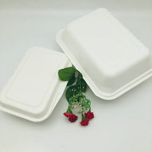9*6 compostable disposable food container bagasse disposable lunch box