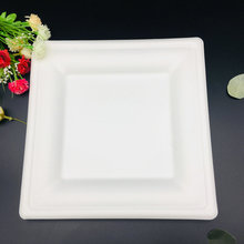 Low Price Disposable Biodegradable Sugarcane Bagasse Paper Plate