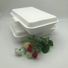Eco-Friendly Biodegradable Disposable Paper Pulp 2-Compartment Clamshell Food Container