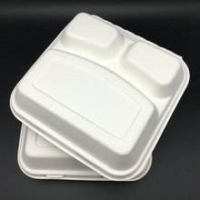 10 Inch Bagasse Lunch Box with 3 Compartments