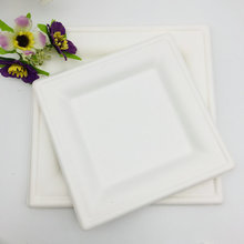 6 Inch Microwavable Biodegradable Disposable Sugarcane Square Plate