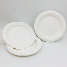 Clean Product Disposable Bagasse Plates Bio-Degradable Plate