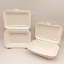 Sugarcane bagasse 8 inch disposable clamshell lunch box