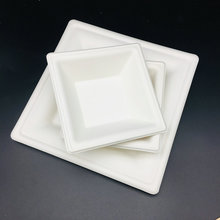 White brief disposable compostable bagasse plate