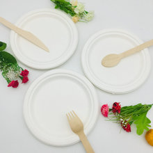 Accept Custom Order Disposable Clamshell Biodegradable food plate