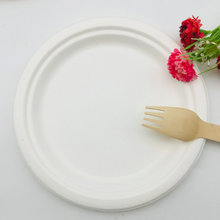 Top seller eco-friendly disposable plate biodegradable sugarcane bagasse tableware