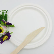 Various Compostable sugarcane bagasse pulp Disposable food Plate