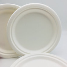 Competitive price wholesale bagasse biodegradable food plate