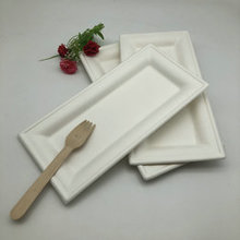 Eco-Friendly Biodegradable Sugarcane Bagasse Rectangle Plate Manufacturer