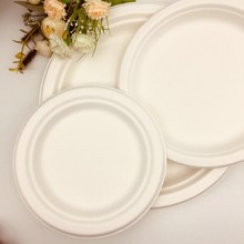 Free Sample Bagasse Pulp Customized Design Round Plate