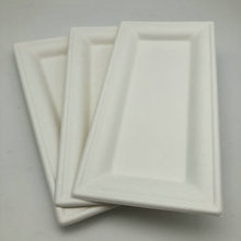 Wholesale 100% Biodegradable Disposable Bagasse Sugarcane Rectangle Plate