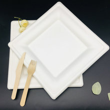 Eco-Friendly Bagasse Square Disposable Pizza Plate with Free Sample