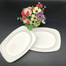Ecofriendly Paper Pulp Disposable Sugarcane Bagasse Oval Plates