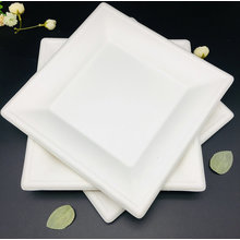 Square biodegradable white disposable plate food packing for restaurant