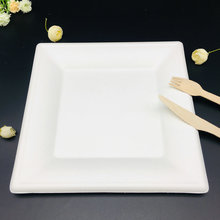 Sugarcane bagasse disposable pulp square plate white