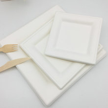 Unique Design Disposable And Biodegradable Square Dinner Plates