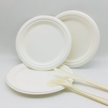 9,10 inch biodegradable disposable bagasse pulp plate