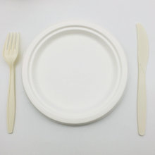 ECO-friendly Biodegradable Disposable sugarcane bagasse plate