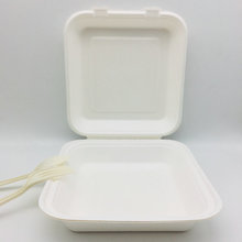Environmental biodegradable bagasse pulp fast food container packaging boxes