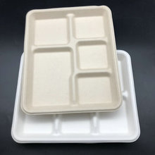 Wholesale bagasse disposable 5 compartment food biodegradable lunch trays