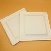 100% Biodegradable Disposable Bagasse Sugarcane 8inches Square Tray For Food