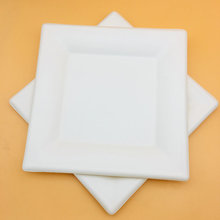 10 inch Square Plate Disposable Tableware Sugarcane Bagasse