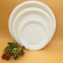 Bagasse Dishes & Plates bagasse white disposable paper round plate dinnerware