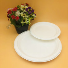 Eco-friendly 6 inch Biodegradable Disposable Sugarcane Bagasse Lunch Round Plate