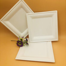 Square biodegradable sugarcane plate bagasse disposable tray