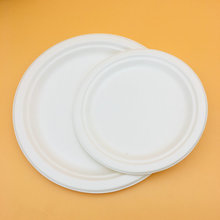 White Color Round Food Grade Bagasse Paper Pulp Plates