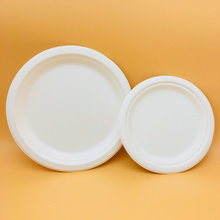 Paper Pulp Eco-Friendly Biodegradable Disposable Compostable Tableware  Plate