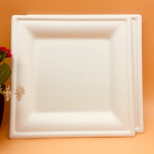 White customized 100% biodegradable bagasse eco-friendly different size square plate