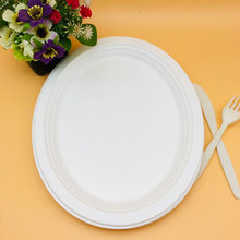 100% Biodegradable food bagasse plate oval disposable paper pulp plate