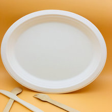 Big size disposable biodegradable oval bagasse plate for food