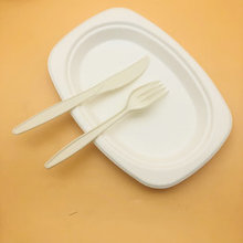 Customized sugarcane baggase oval paper plate bagasse disposable plates