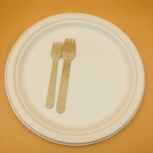 Disposable bagasse plate biodegradable compostable sugarcane tableware 9Inches