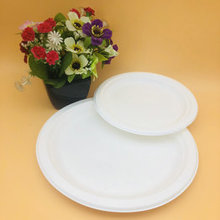 Sugarcane Bagasse Biodegradable 7 inch in Round Disposable Plates