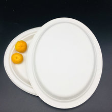 High Quality Biodegradable Dinnerware Oval Plate with Bagasse Pulp Material