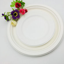 100% Environment-Friendly Disposable Biodegradable Plate Sugarcane Plate