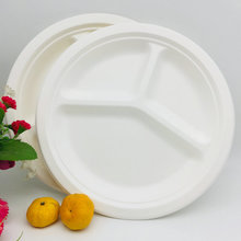 10 inch Bagasse Plate 3 Sections Biodegradable Dinner Plates