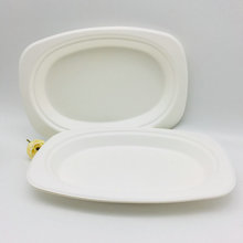 Hot Sale Eco-Friendly Biodegradable Oval Paper Pulp Sugarcane Plate