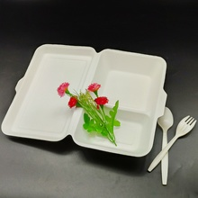 Eco-friendly Bento Lunch Box Biodegradable Pulp Tableware