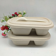 Biodegradable 800ml Food Containers Sugarcane Food Boxes 2