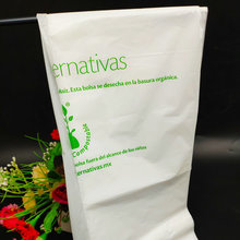100% Biodegradable Printing PLA Bag Customized Shopping Bags